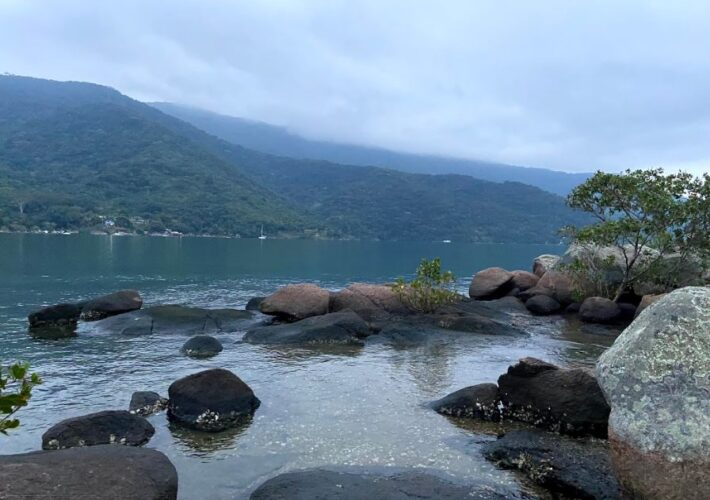 La vida en una isla en medio de una selva tropical en Río de Janeiro